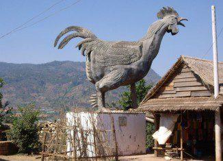 Làng gà Darahoa – điểm dừng chân hấp dẫn khi đến Đà Lạt