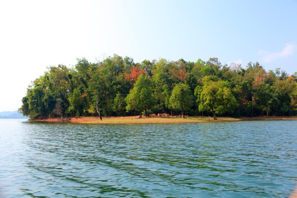 Bức tranh thiên nhiên quyến rũ của hồ Phú Ninh
