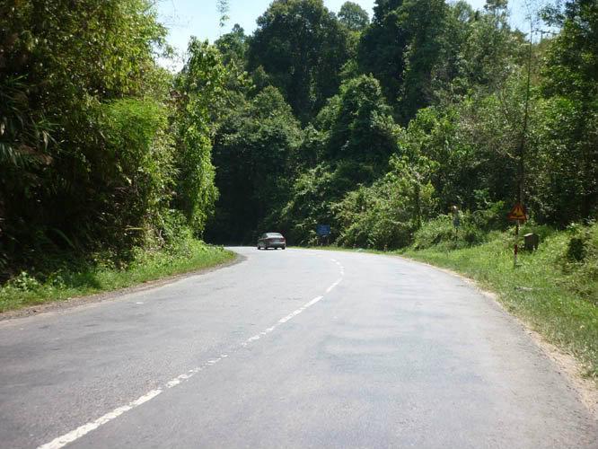 Bức tranh phong cảnh nền nã của đèo Chuối