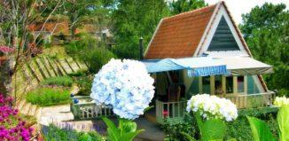 Vườn hoa Minh Tâm - GSV Travel