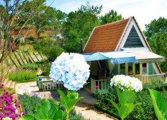 Thưởng ngoạn vẻ đa sắc của vườn hoa Minh Tâm