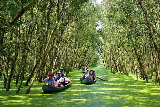 Những con đường xuyên rừng tràm đầy lãng mạn của miền Tây